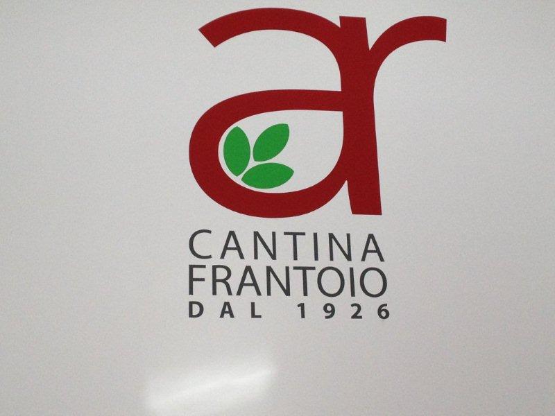 Study visit to Cantina Frantino