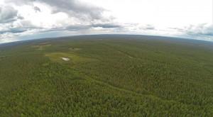 Kuva 2 Kaukomaisemakuvaus Virtuaalimetsän horisontin mallintamiseksi toteutettiin kuvauskopterilla