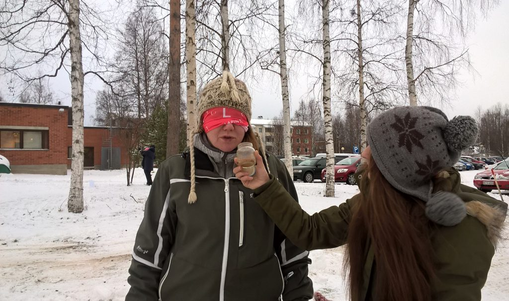 Kuva 2. Opiskelijoita ohjausharjoituksessa Menetelmät ja toimintamuodot -jakson lähipäivänä Rovaniemellä marraskuussa 2016.