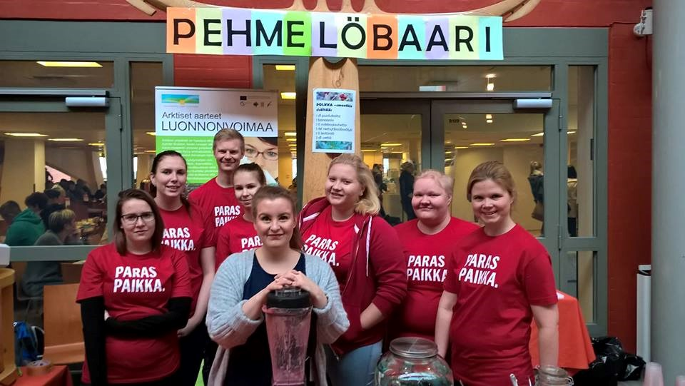 Kuva 2. Pehmelöbaarin toimijat 12.10.2016. Kuva Johanna Kinnunen.