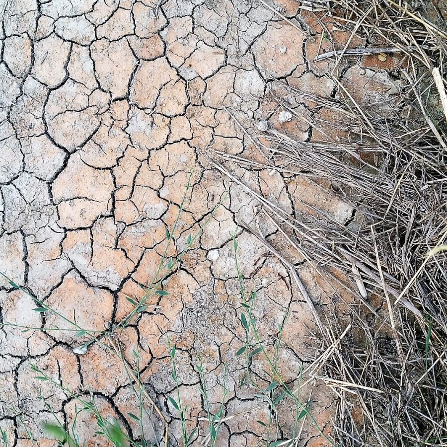 Dry grounds due to missing rain
